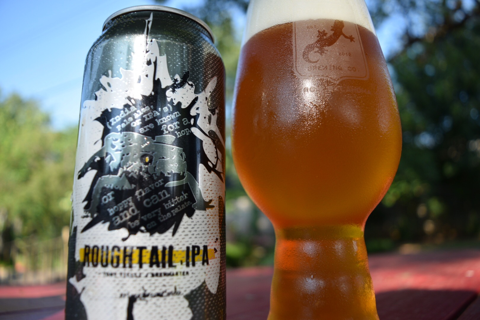 roughtail_ipa_closeup